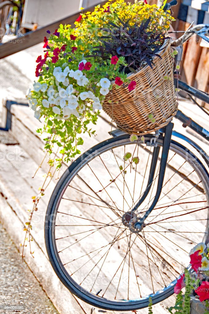 old bike with basket of flowers for decoration