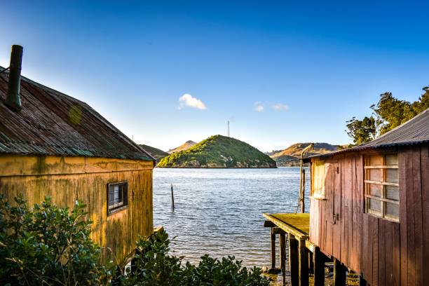 Old boatsheds, Back Beach, Port Chalmers stock photo