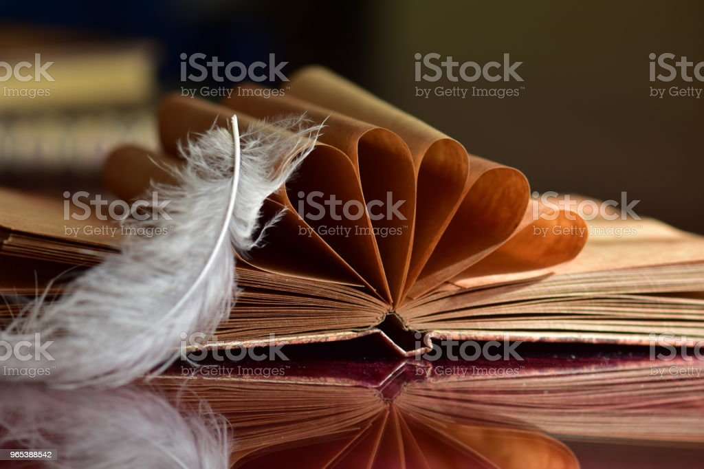 Old book and feather royalty-free stock photo