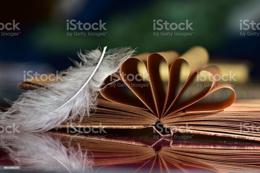 Old book and feather zbiór zdjęć royalty-free