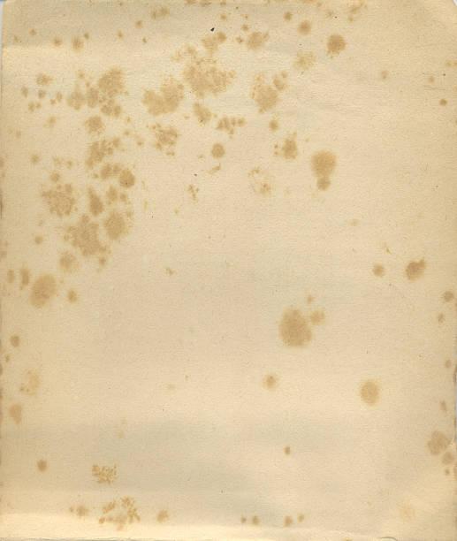 Alter Buch cover – Foto