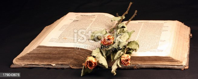 121305595 istock photo Old book from 16th Century 179043675