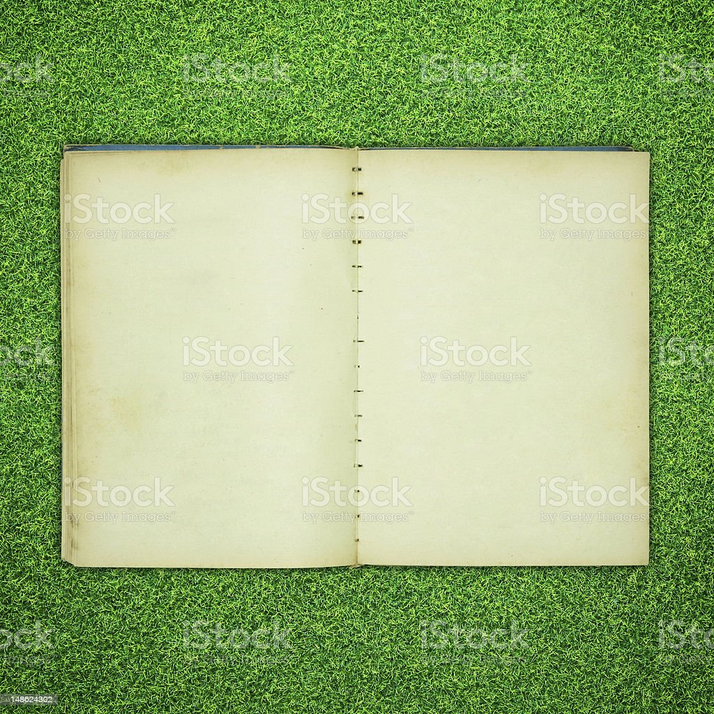 Old book open on the grass royalty-free stock photo