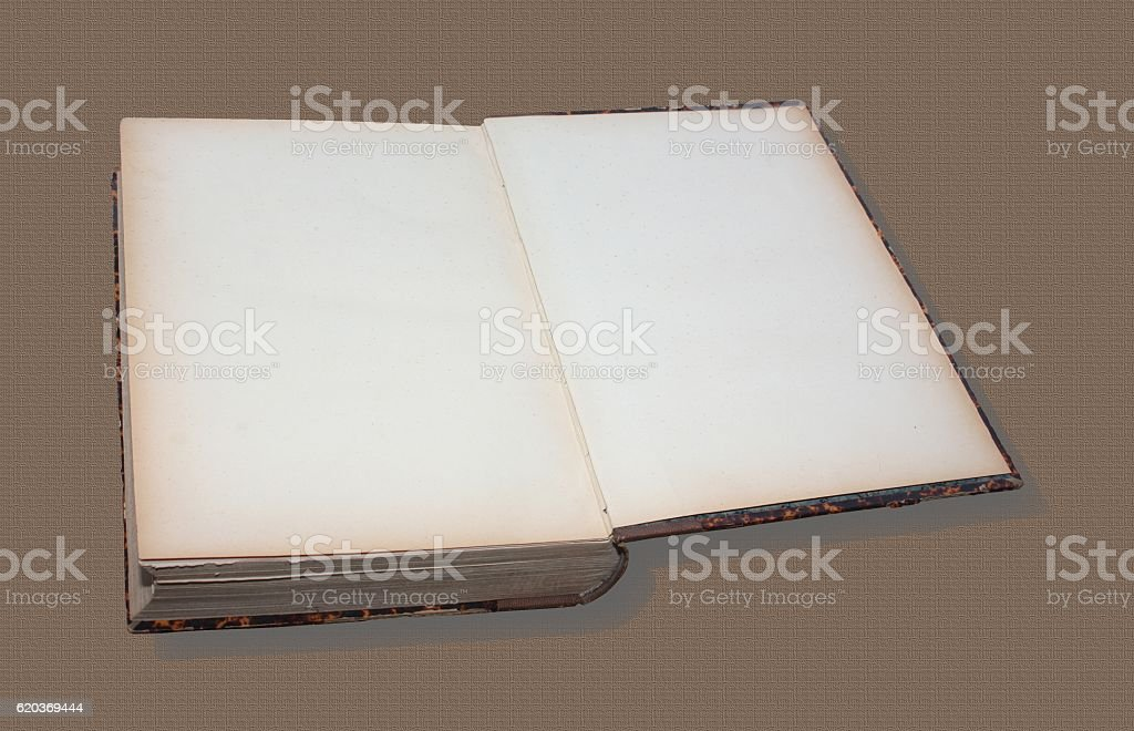 Livre Ancien Ouvert Stock Photo More Pictures Of Blank