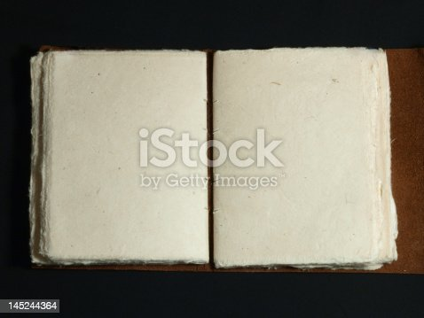istock Old Book with Blank Pages 145244364