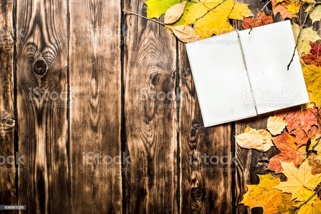 Old books and autumn leaves. stock photo