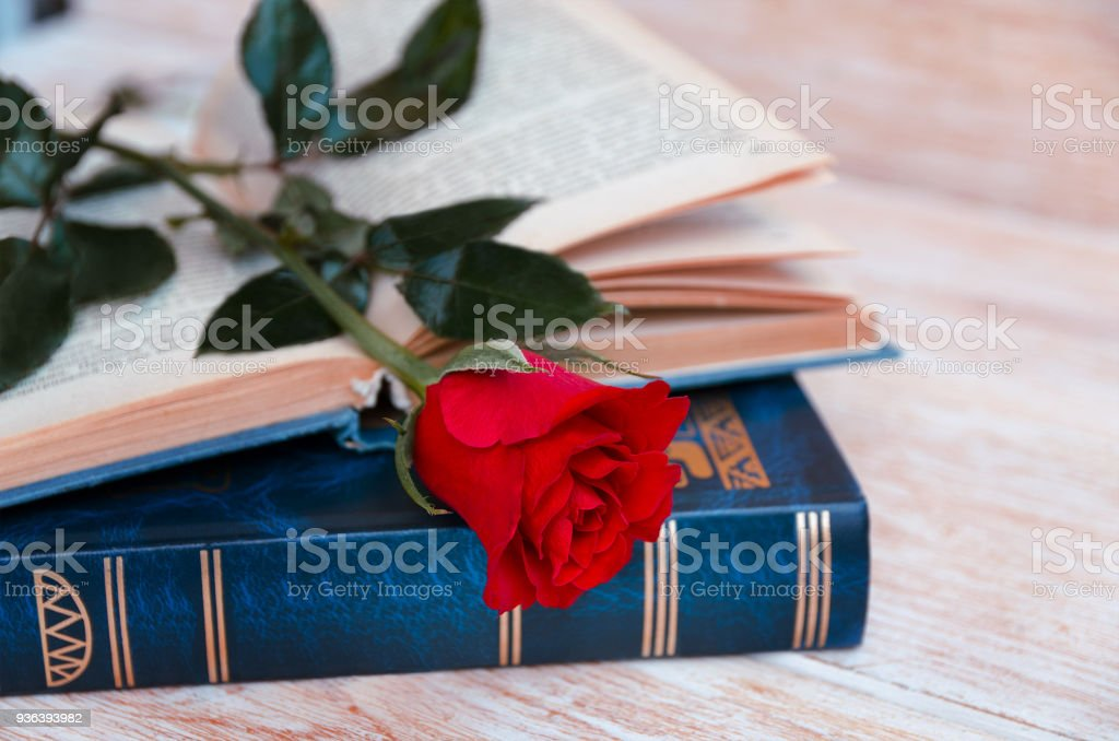 Old books and red rose, traditional gift for Sant Jordi, the Saint Georges Day. It is Catalunya's version of Valentine's day, celebrated on 23rd of April. stock photo