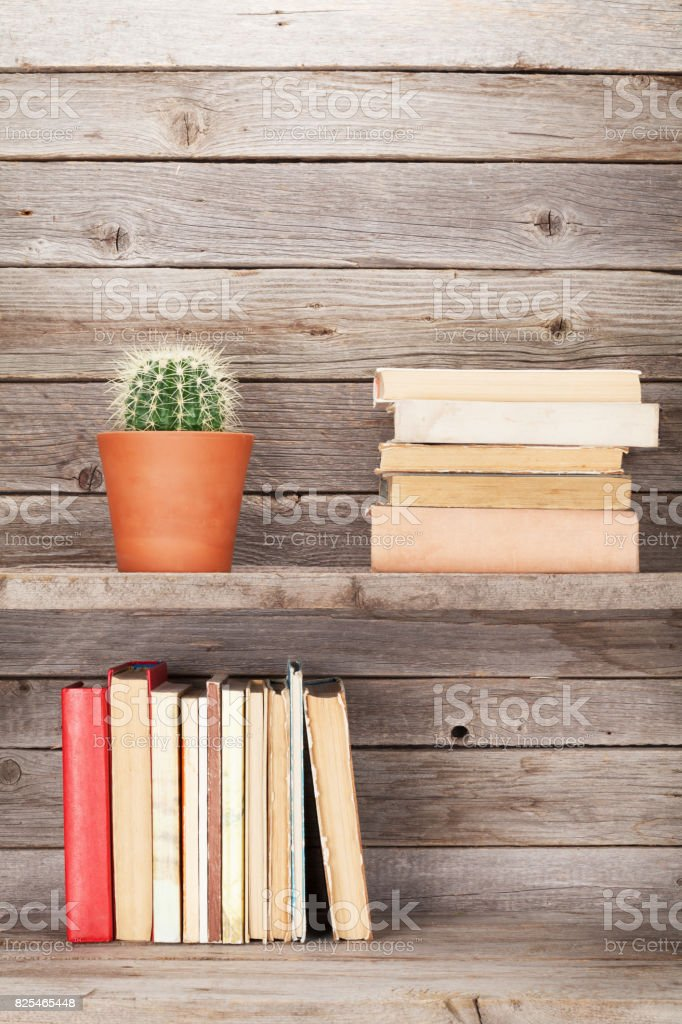 Old books on a wooden shelf stock photo