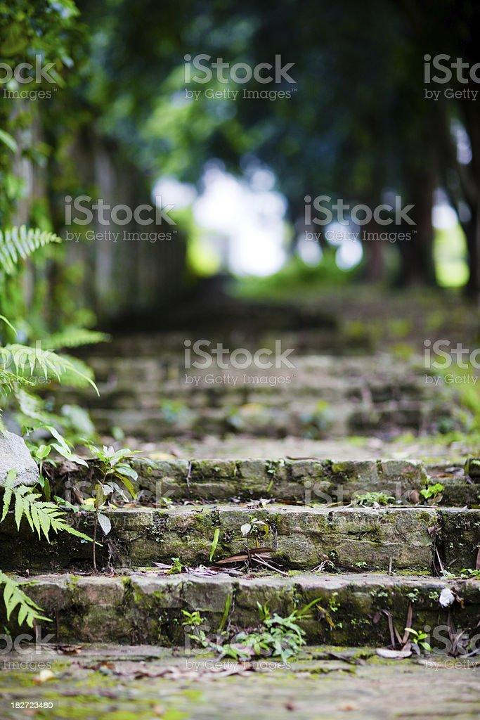 Old brick steps royalty-free stock photo