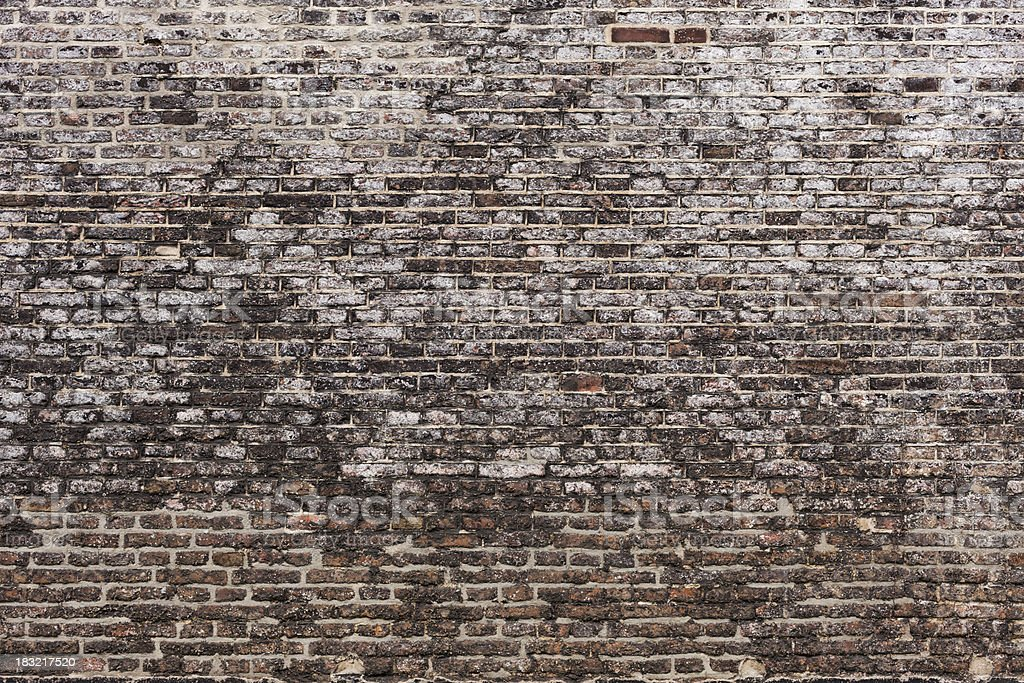 Old brick wall background texture – Foto