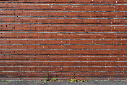 An aging brick wall suitable for backgrounds and abstracts, includes a stretch of sidewalk and weeds.