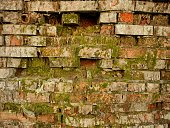 Red and gray bricks. Green moss Conservation concept of natural monuments.