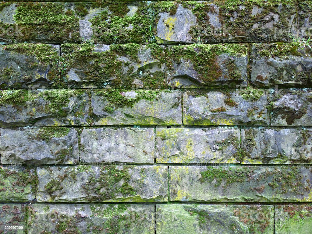 Old brick wall with moss. stock photo