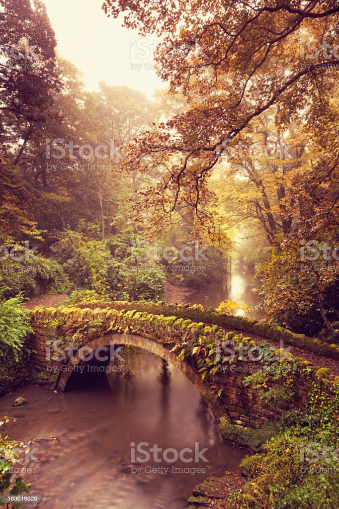 Old Bridge in the Fog - Jesmond Dene stock photo