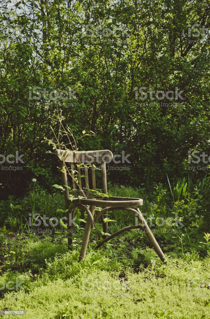 old broken chair and overgrown spring garden royalty-free 스톡 사진