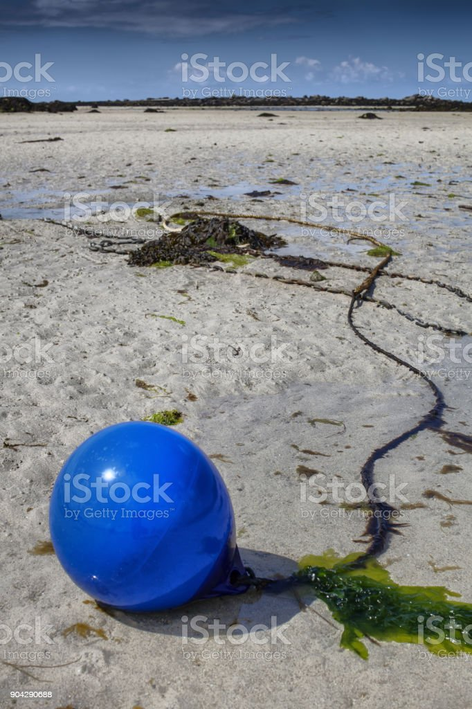 Old buoy in low tide covered with green algae, in low tide coastline in france stock photo