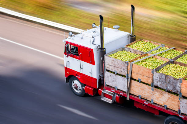 old cab over big rig semi truck transporting pears in wooden boxes on flat bed semi trailer - infrastrutture foto e immagini stock