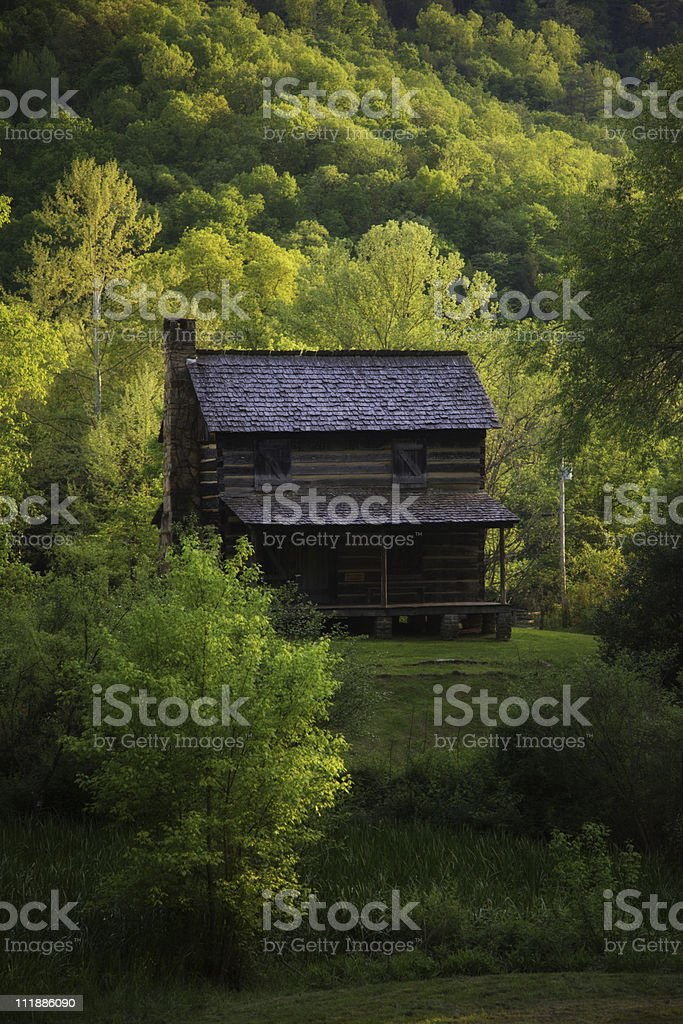 Old Cabin royalty-free stock photo