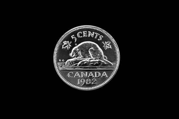 old canadian nickel on a black background - nickel stock photos and pictures