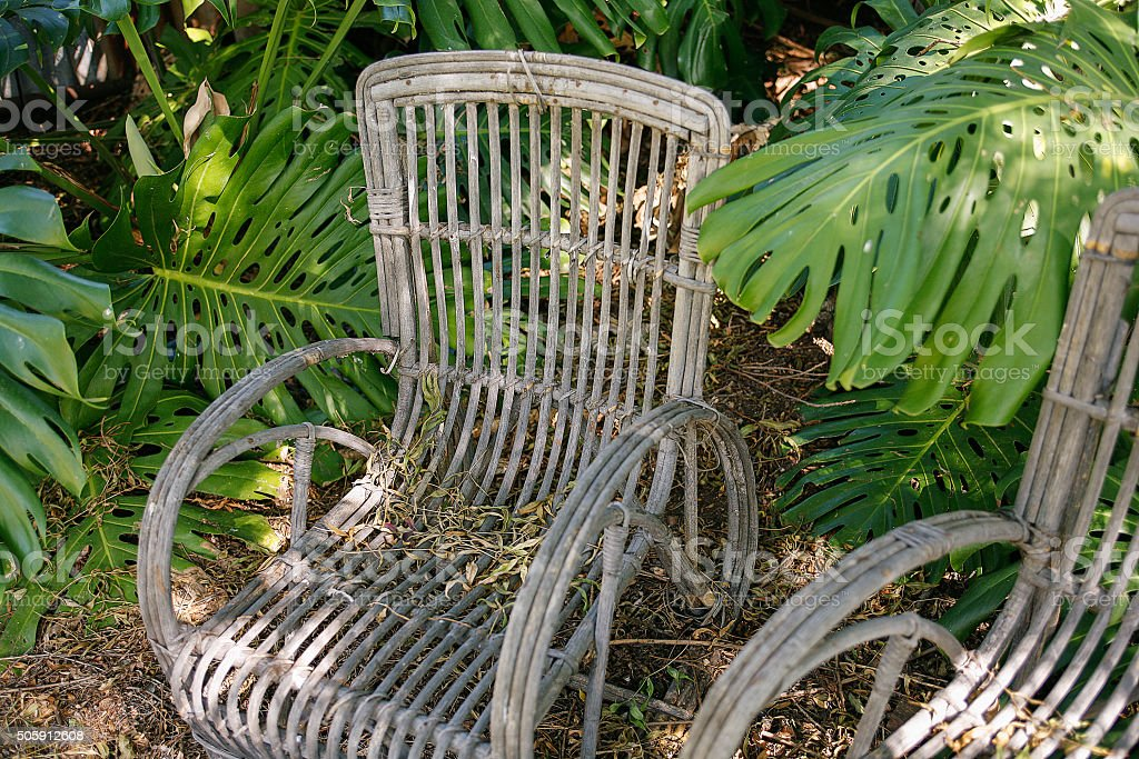 Old cane garden chairs stock photo