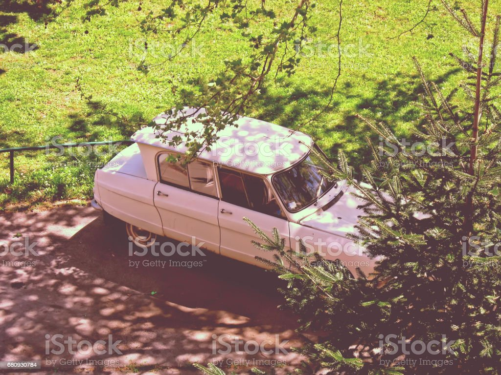 Old car parked in the shade of trees royalty-free stock photo