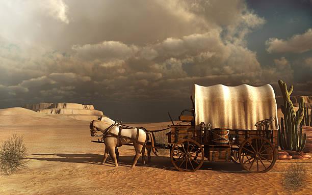 old carriage - 載客馬車 個照片及圖片檔