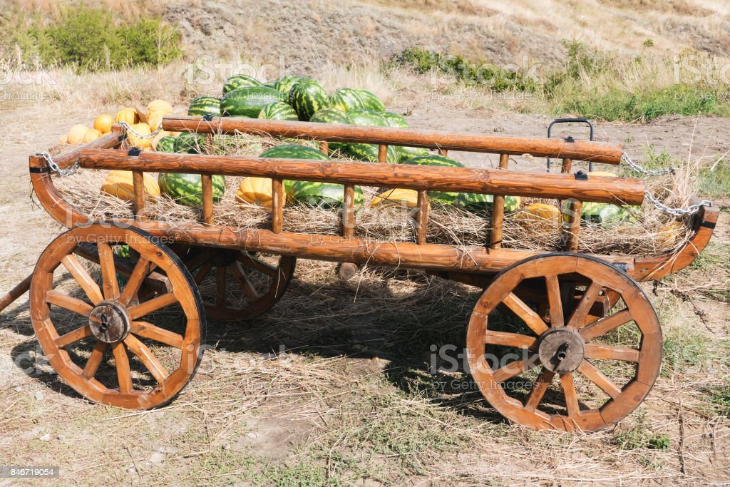 old cart with melons and watermelons stock photo