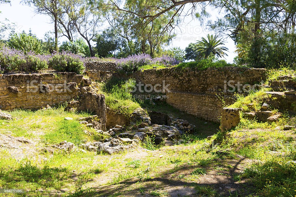Old Carthage ruins royalty-free stock photo