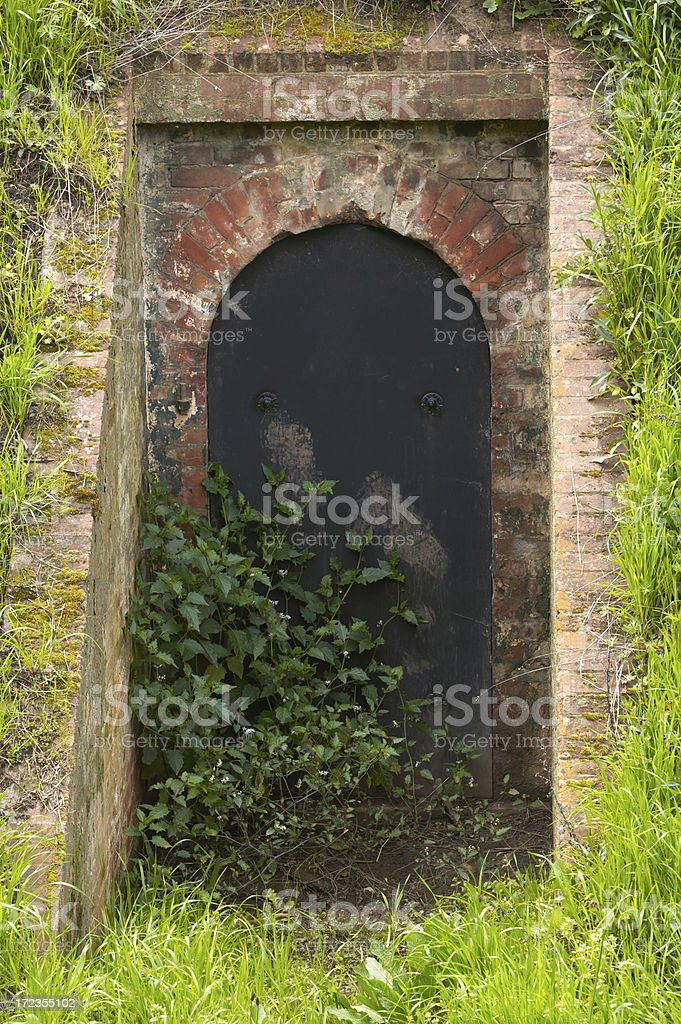 Old cellar door royalty-free stock photo
