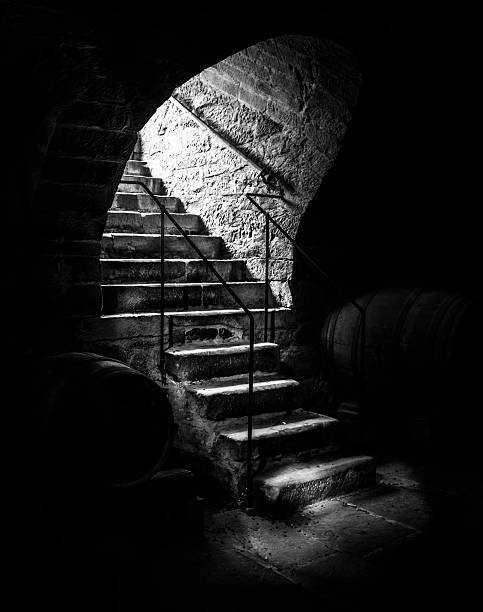 old cellar staircase in low light - cave entrance photos et images de collection