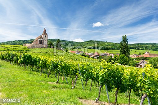 istock Old church and vineyards in Hunawihr village in Alsace, France 925850210