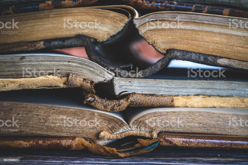 old Church books. Macro. stock photo