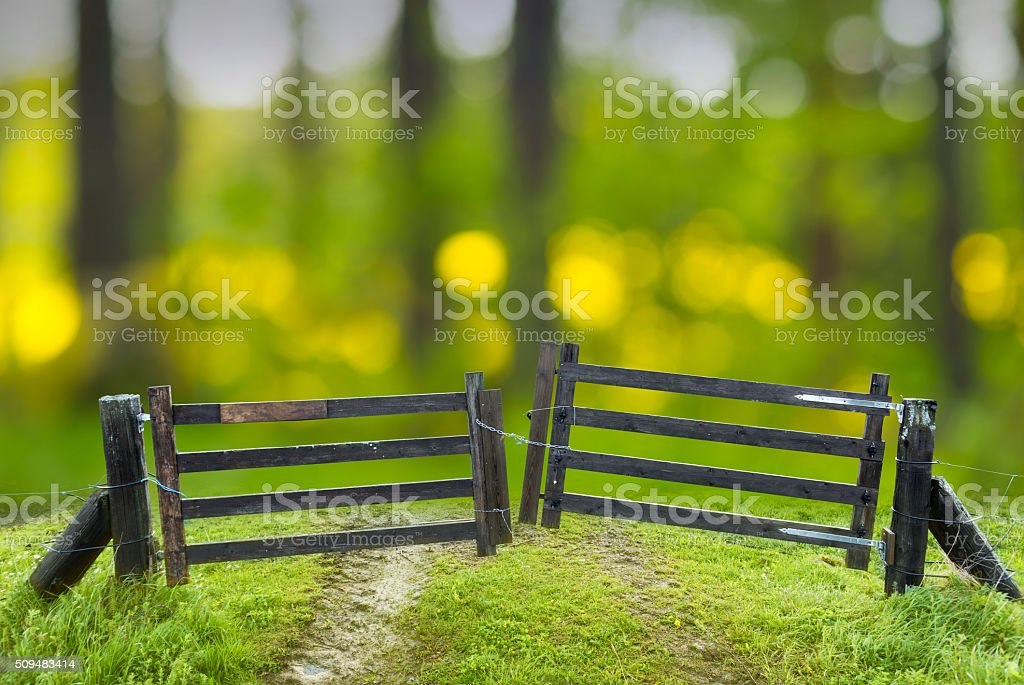 Old closed wooden gate stock photo