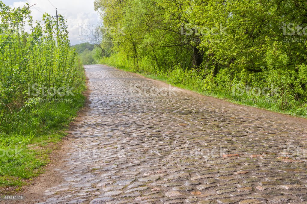 Old cobblestone road after spring rain, central Ukraine foto stock royalty-free
