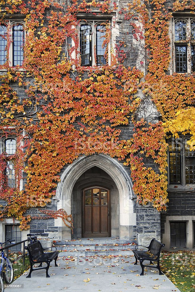 old college entrance with fall ivy stock photo