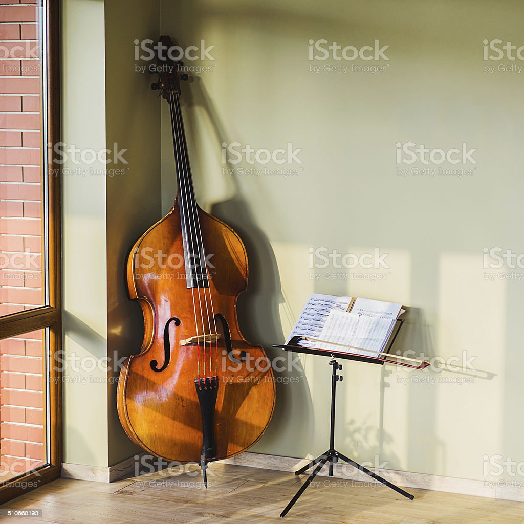 old contrabass stock photo