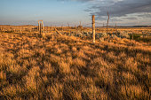 istock Old Corral at Grasslands Frenchman River Valley 1009483712