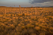 istock Old Corral at Grasslands Frenchman River Valley 1009486414