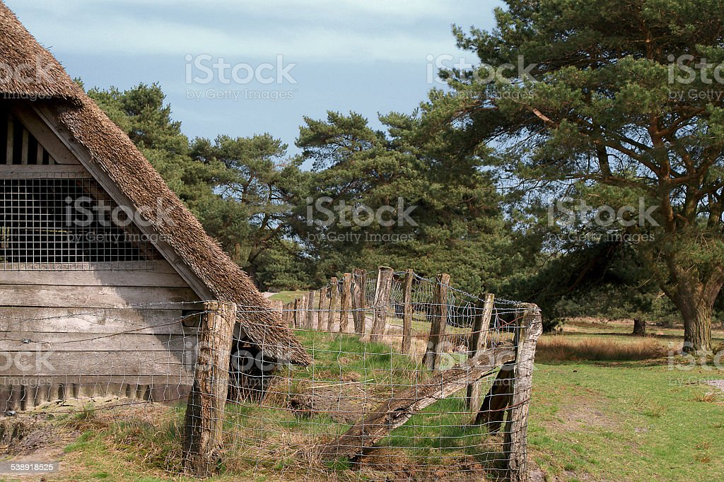 old cottage in the heather- and moorland of Northern Germany stock photo
