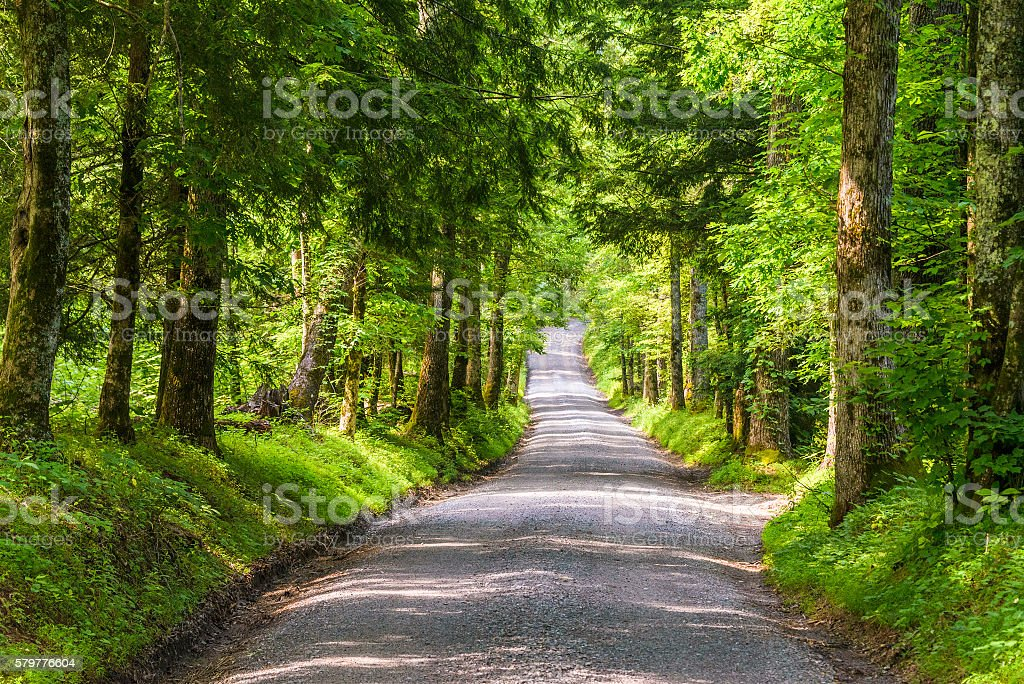Old Country Road stock photo