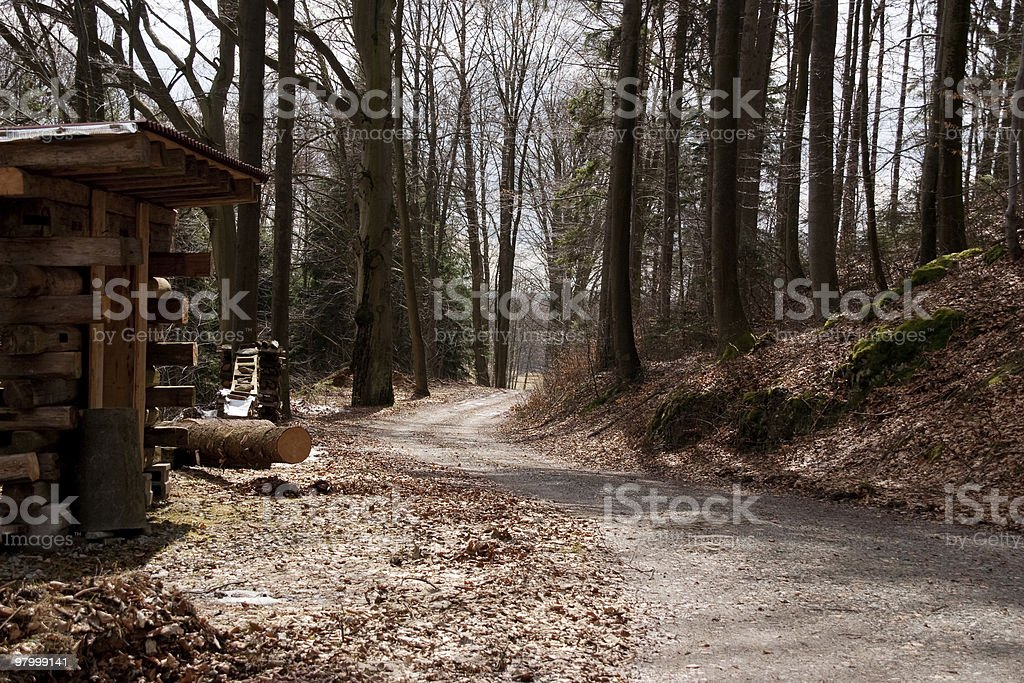 old country road trees leaves clear sky royalty-free stock photo