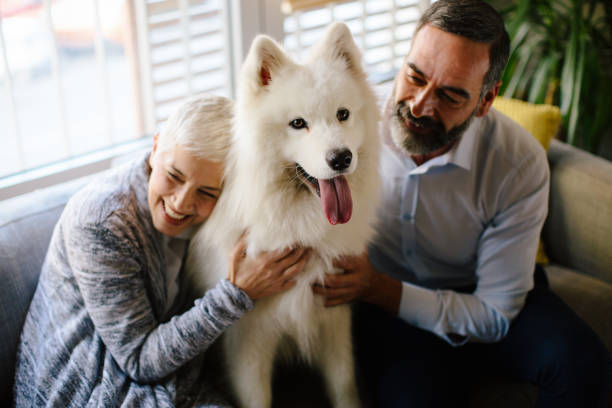 Altes Ehepaar mit ihrem Hund – Foto