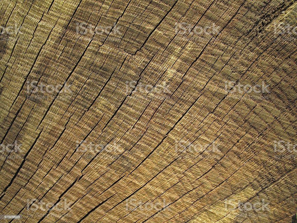 Old cracked wood royalty-free stock photo