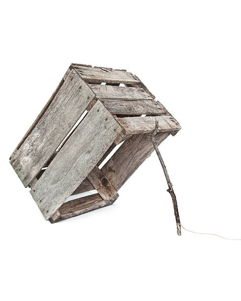 old crate trap stock photo