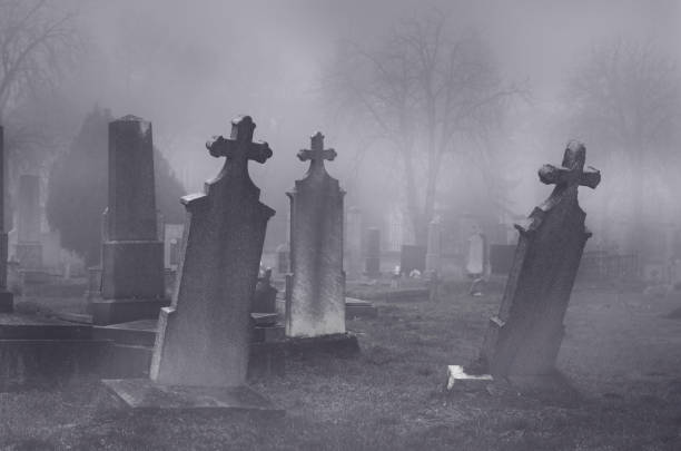 old creepy haunted cemetery on foggy night - cimitero foto e immagini stock