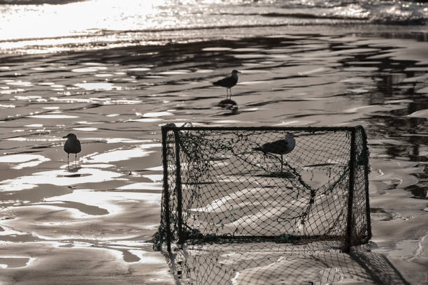 Old damaged abandoned football soccer goal at the beach. stock photo