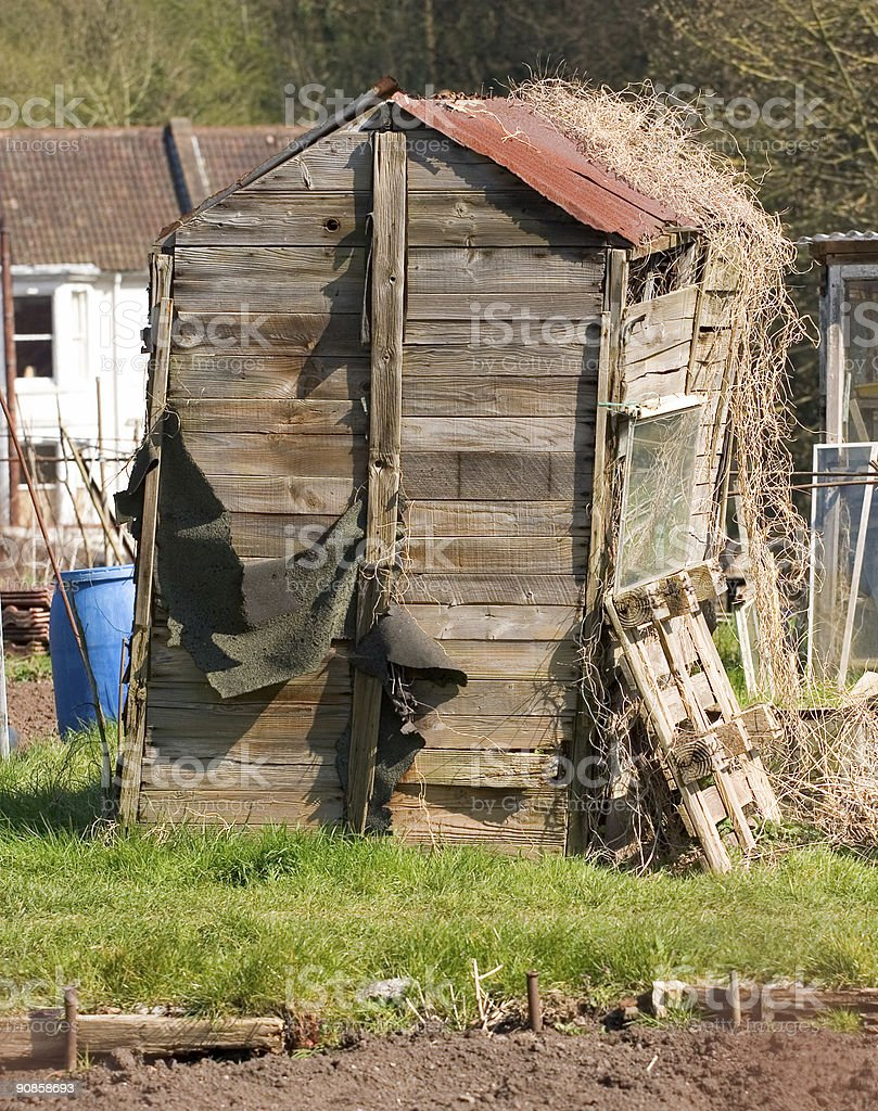 Old delapidated garden shed sat in an allotment stock photo