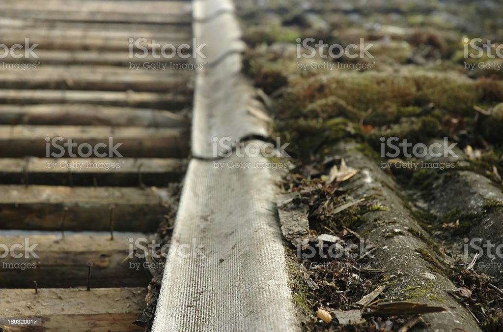 old demaged roof with moss royalty-free stock photo