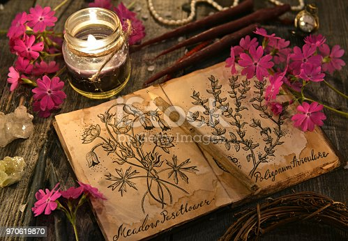 811119304 istock photo Old diary with drawings of magic herbs, black candles and primula flowers on planks 970619870
