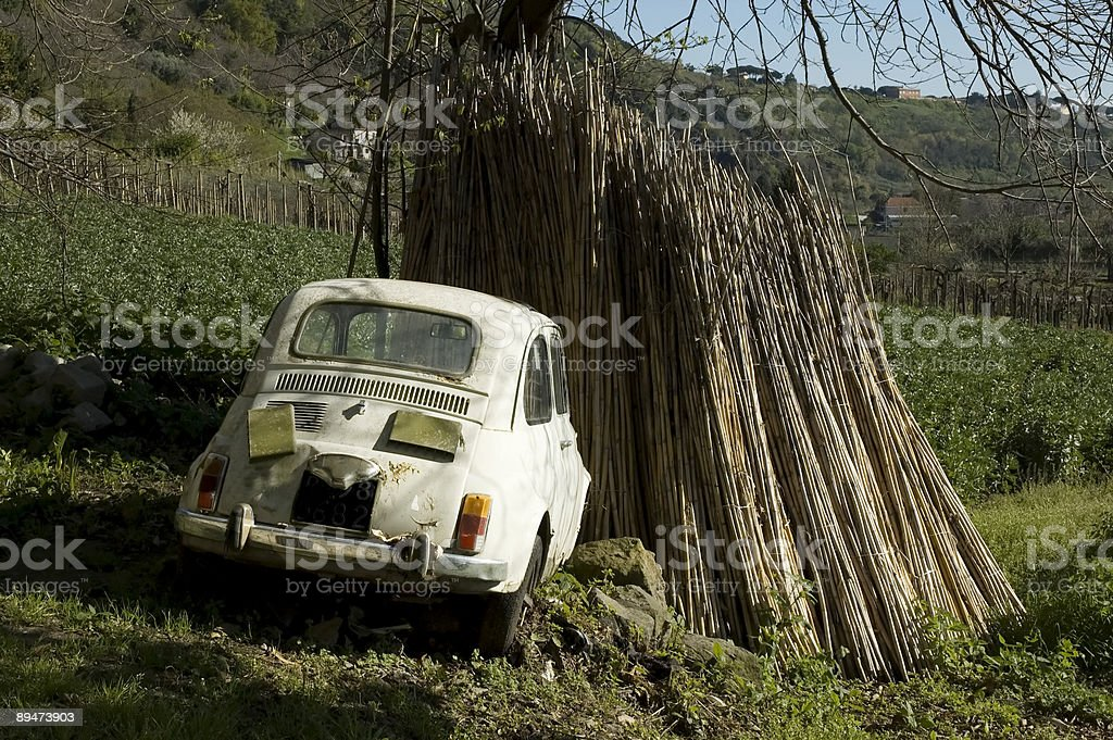 Old discarded and abandoned Fiat 500 Cinquecento stock photo